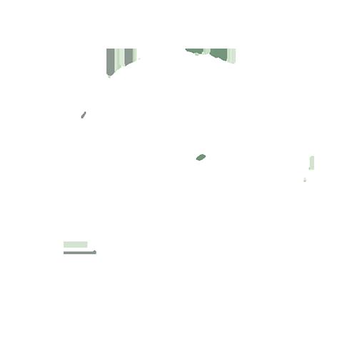 Bodega Bisztró és Barbecue